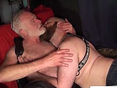 Polarbear doggystyling leather cub